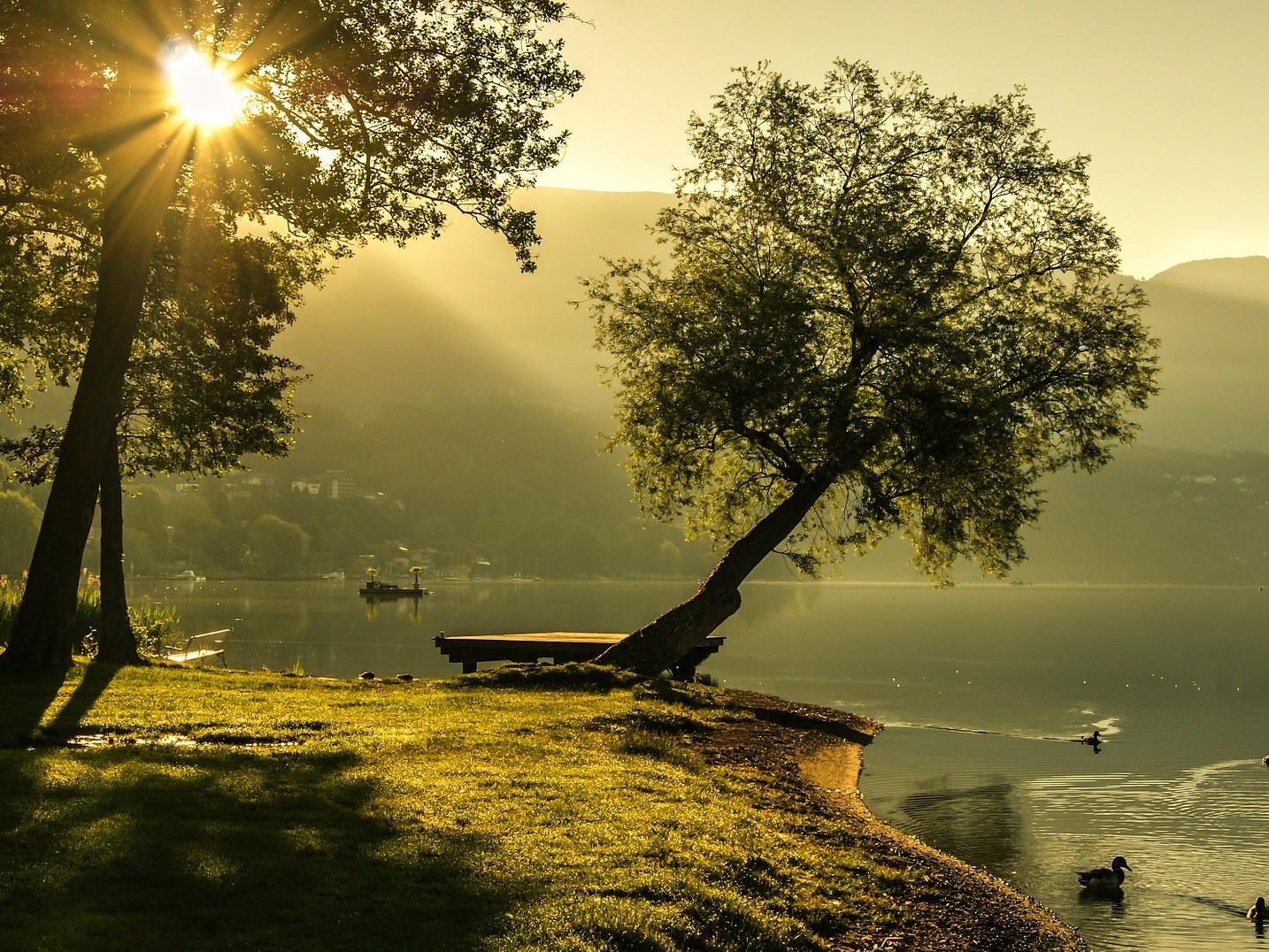 Wald und Wiesenstueck am See dort wohnen wo andere Urlaub machen