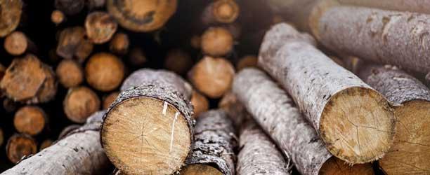 Holzstapel rund als Bautraeger