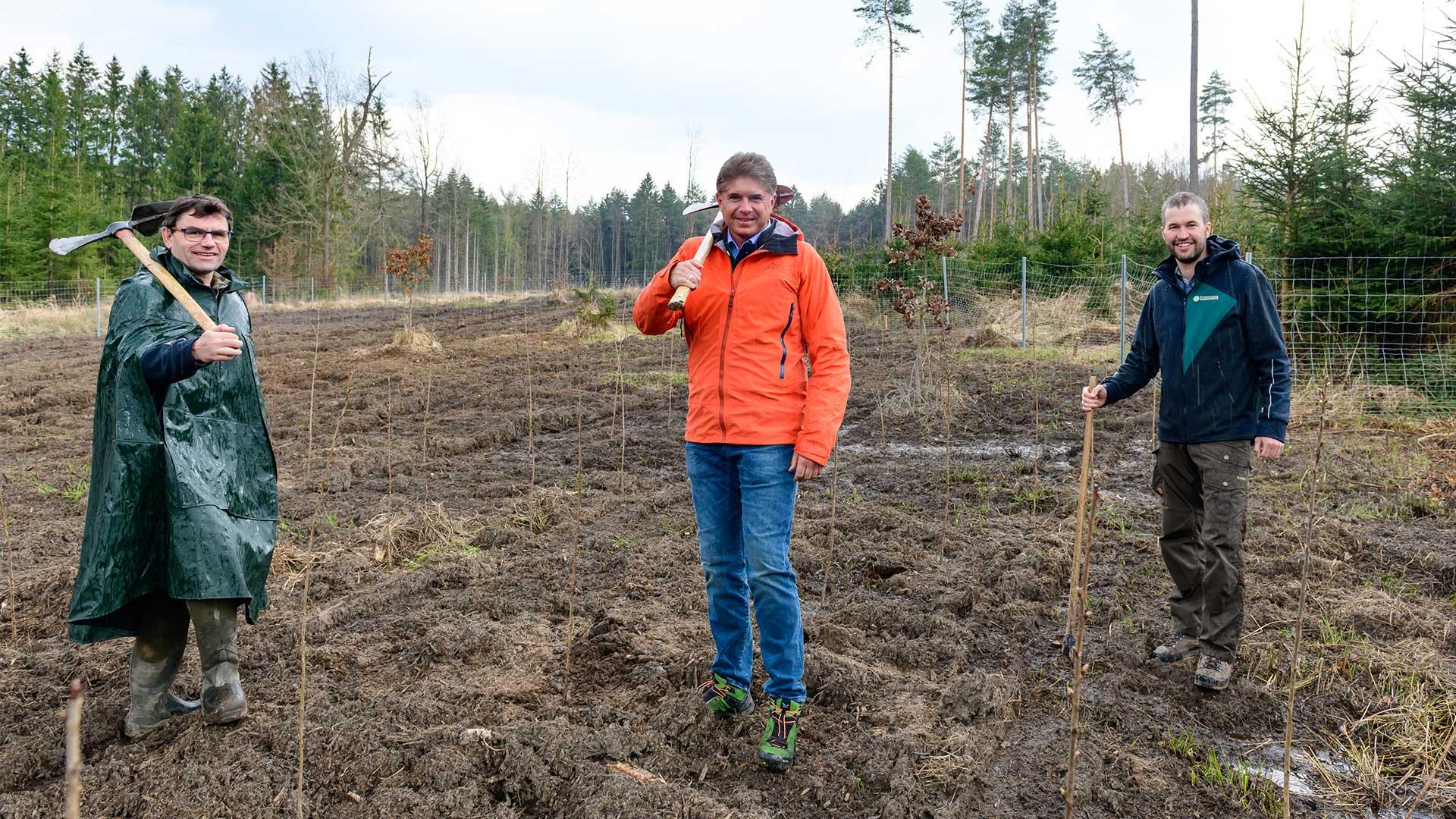 wert.bau GF pflanzt Bäume mit Bundesforsten
